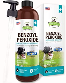 Top 10 Best Benzoyl Peroxide For Dog Acne Reviews Of 2021